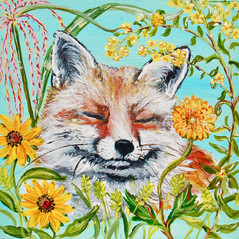 Splendor in the Grass Fox with Black Eye