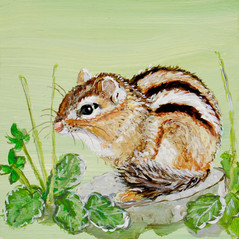 Satiated Chipmunk with Viola Leaves and