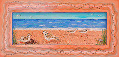 Pipig Plovers on Crane Beach 12 x 28 SOL