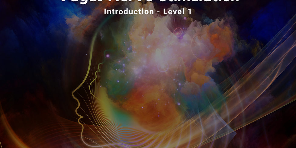 Vagus Nerve Stimulation - Level 1 (Introduction)