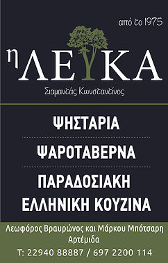 leyka_ΟΚ. tetarto-3.jpg