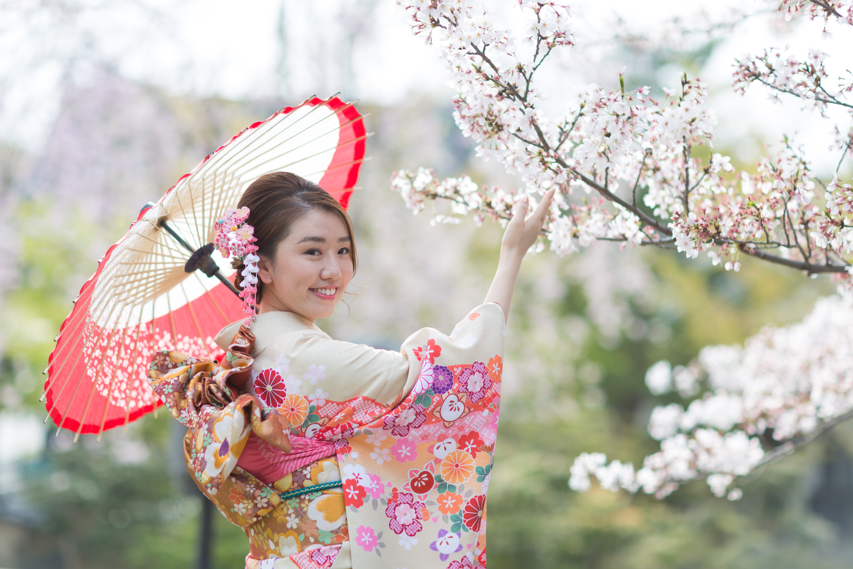 Shooting Photo Kyoto Cherry Blossom
