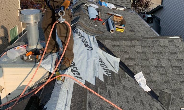Service: Repair (roof)