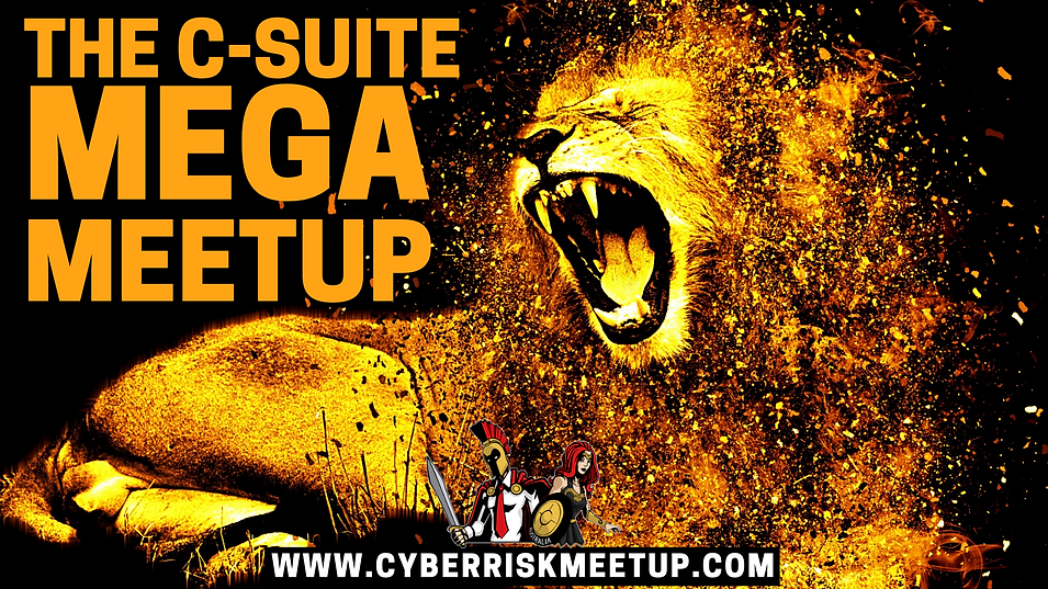 Cyber Riskers Talk Show (16).png