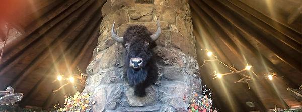 Buffalo Head Dec 2019_edited.jpg