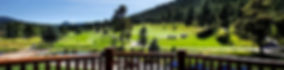 banner_evergreen_1.jpg