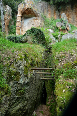 Visite alle vicine città etrusche