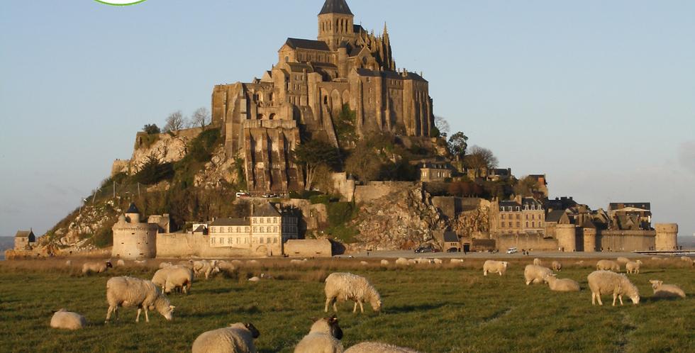 Journée découverte du Mont-Saint-Michel - 10/25 ans
