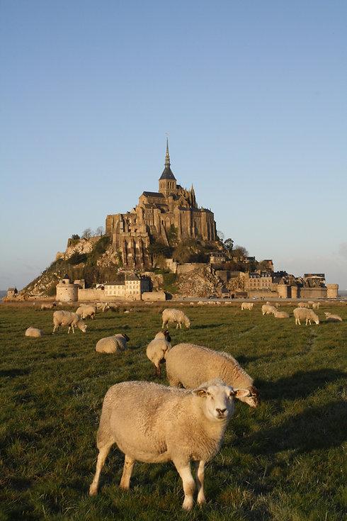 Journée découverte Mont Saint Michel