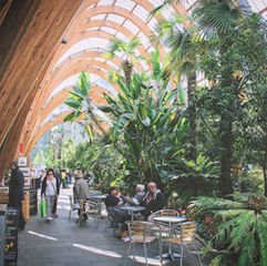 Winter Gardens at St Paul's
