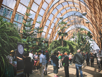 Top 15 Free Things To Do In Sheffield