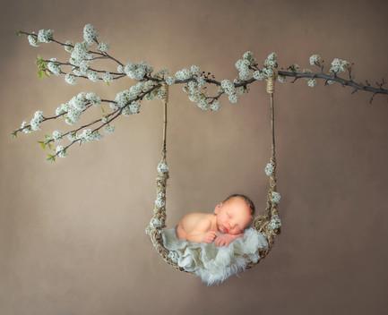 FlashProStudio_newborn_baby_photoshoot_White_spring_swing