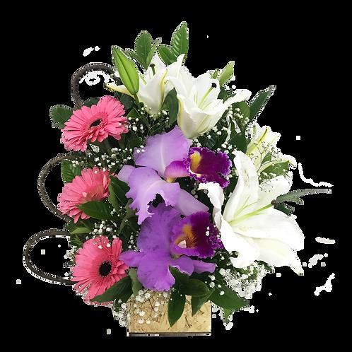 Arranjo de Gérberas, Orquídeas e Lírios