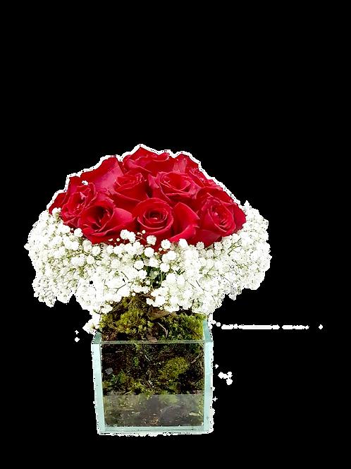 Tupiara Pequena de Rosas