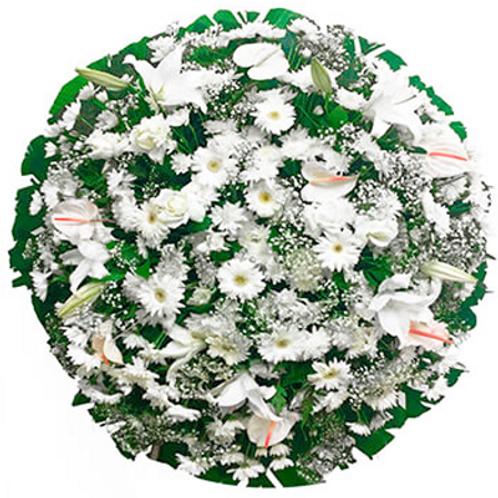 Coroa B Luxo Branca