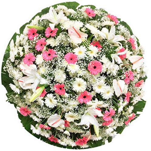 Coroa B Luxo Rosa
