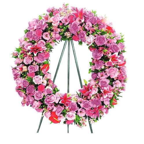 Arco Americano Rosa