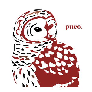 pueo simple.png