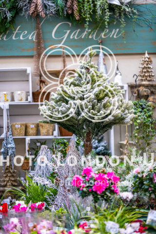 Small Christmas Tree And Flowers In A Store