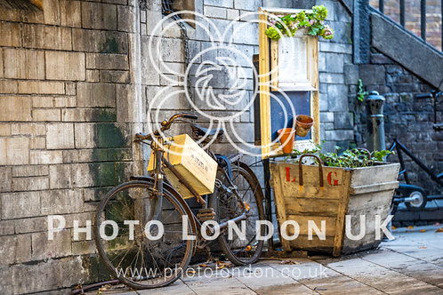 Vintage Bike Chained To The Wall Around Beautiful Flowers And Decorative Boxe