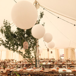 Giant Balloons in Marquee
