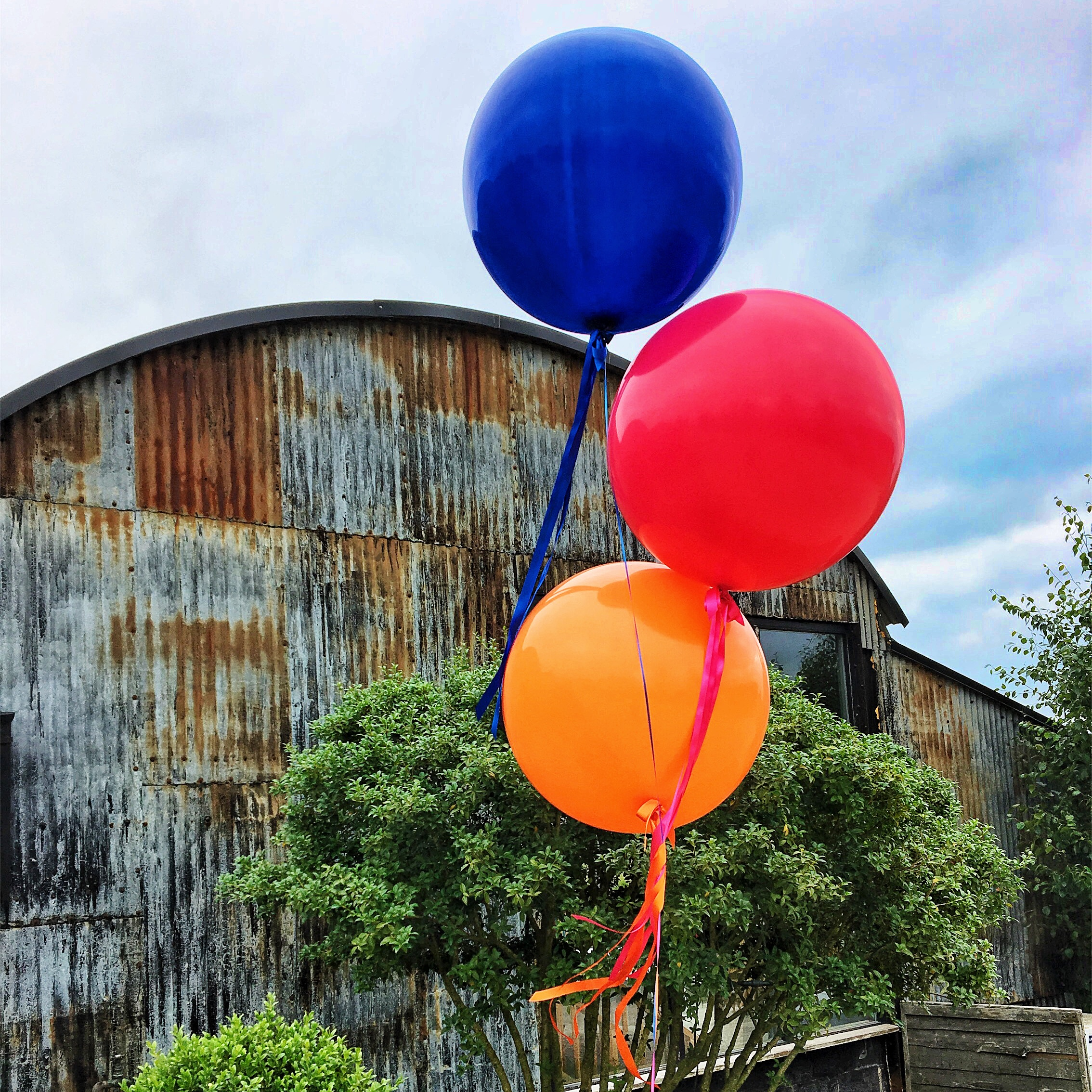 Stone Barn Giant Balloon Bunch