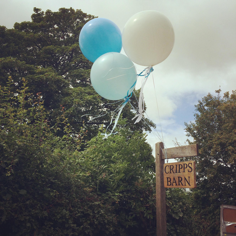Cripps Barn Giant Balloons