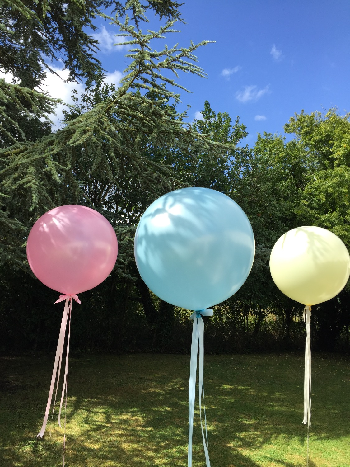 Giant Balloon Pastel Collection