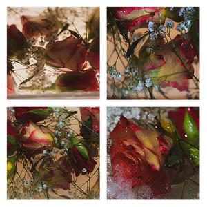 Jellied Flowers