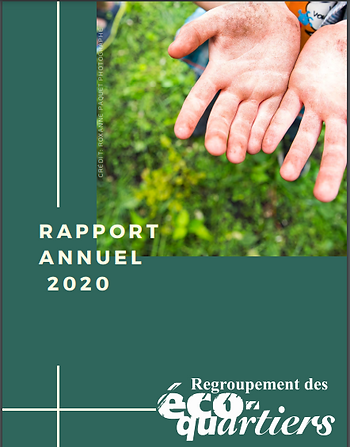 rapport annuel.PNG