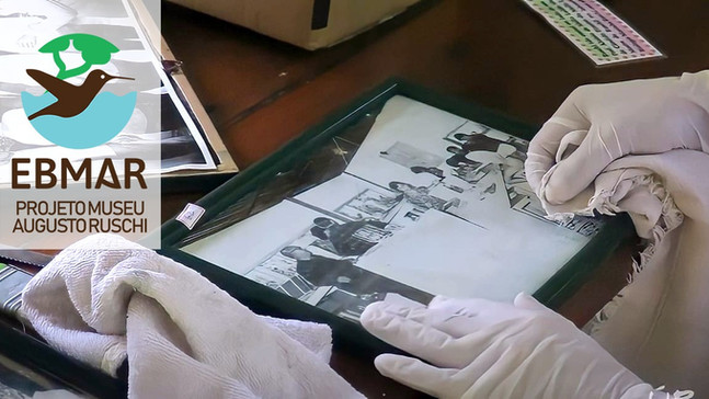 #55: Projeto Museu Augusto Ruschi - Últimos Refúgios na TV Ambiental