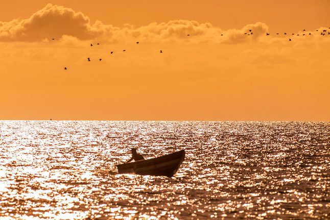 #36: Abrolhos - Últimos Refúgios na TV Ambiental