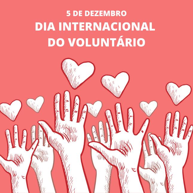 Trabalho voluntário: exercício de cidadania e solidariedade