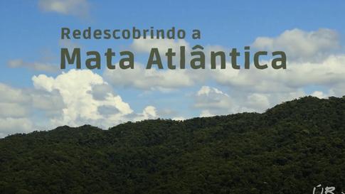 #65: Redescobrindo a Mata Atlântica - Últimos Refúgios na TV Ambiental
