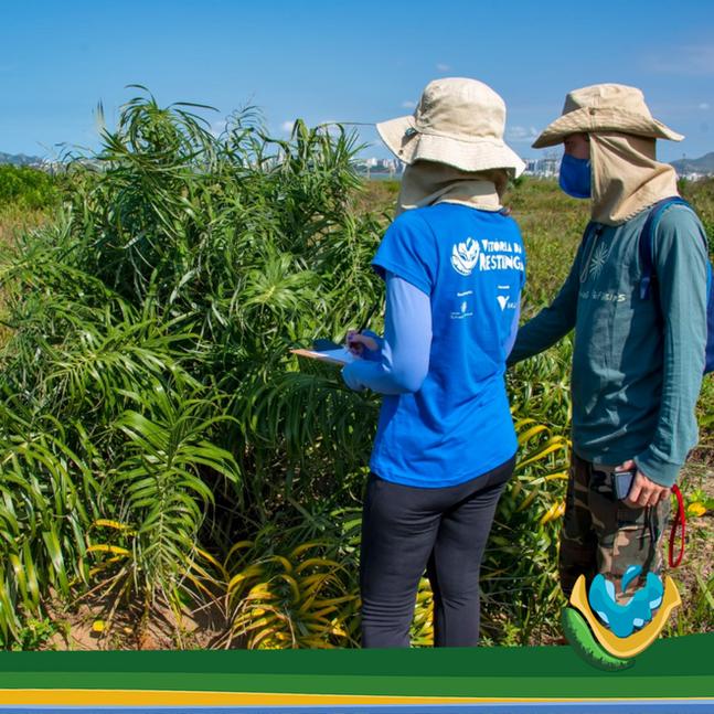 Projeto Vitória da Restinga realiza busca ativa  em Camburi/ES e faz mapeamento do comércio local