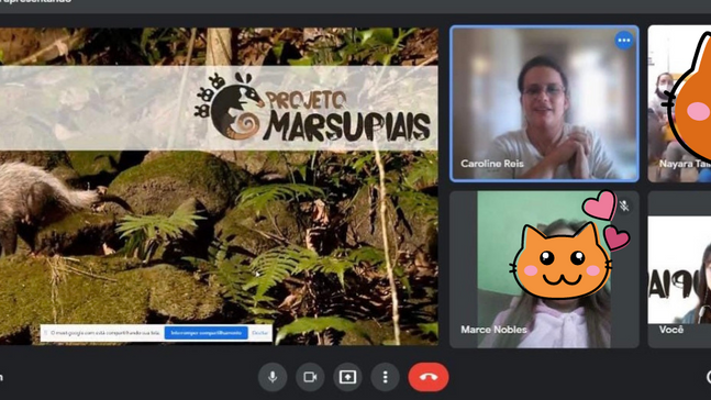 Projeto Marsupiais realiza encontro online com alunos do Rio Grande do Sul