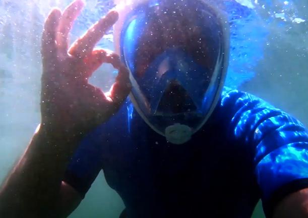#27: Mergulho na Ilha do Frade - Últimos Refúgios na TV Ambiental
