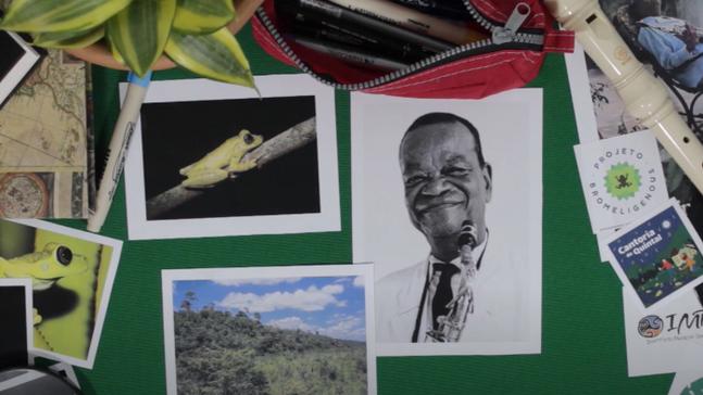 """Conheça a """"perereca-pixinguinha"""", espécie batizada em homenagem ao ícone do chorinho brasileiro"""