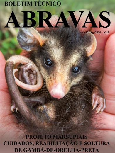 Projeto Marsupiais produz boletim técnico sobre cuidados e reabilitação de filhotes de gambás