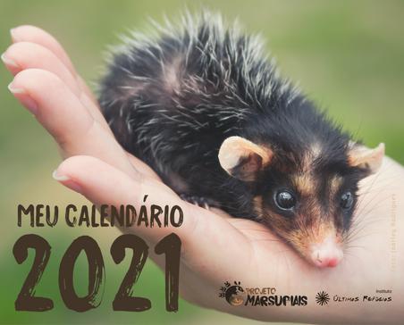Meu Calendário 2021: conheça a campanha de crowdfunding do Projeto Marsupiais