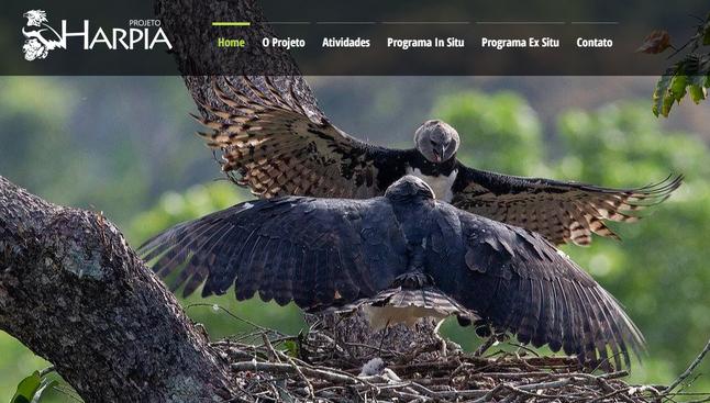 Projeto Harpia ganha novo site