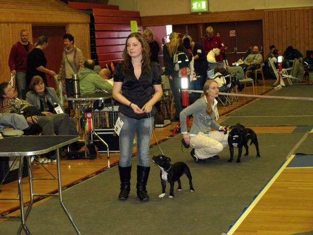 Kongsbeghallen 8 November 2009
