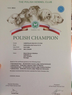 polskch