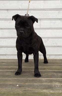 Jax 6 months