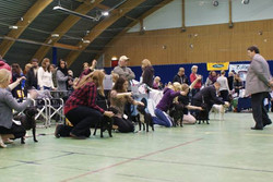 Letohallen 16 January 2010 - 001