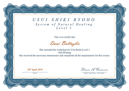 Level 1 Reiki Certificate - Dani Battagl