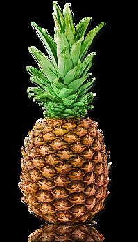 Aloe Vera Direct, Aloe Vera Miami Distributors, Aloe Vera Orange Flavor
