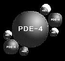 The Original Resveratrol 白藜芦醇|抑制PDE-4|