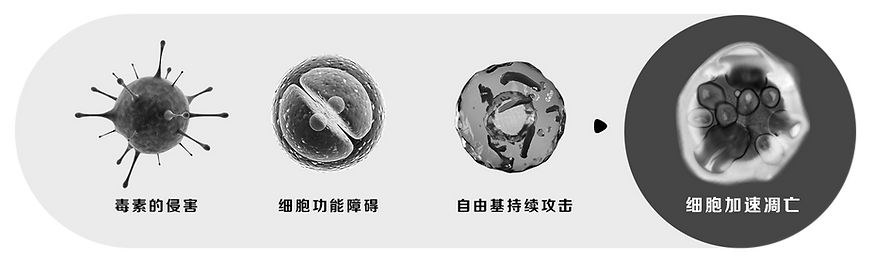 TO清修抗-SEC07-PIC01.png