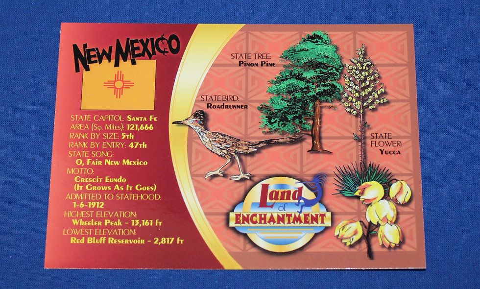 NM Land of Enchantment Postcard